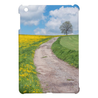 Dirt Road and Tree Case For The iPad Mini