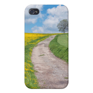 Dirt Road and Tree iPhone 4 Covers