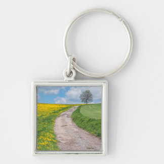 Dirt Road and Tree Silver-Colored Square Key Ring