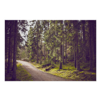 Dirt Road Green Trees Forest Hiking Trail Poster