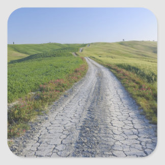 Dirt Road through Fields and Hills, Val d'Orcia, Square Sticker