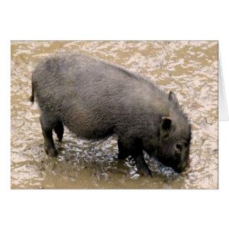 dirty black piglet cards