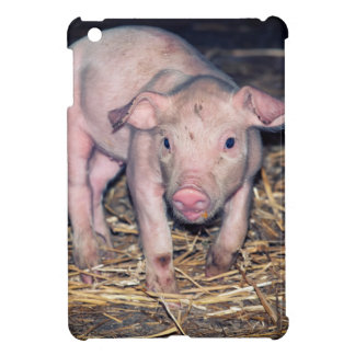 Dirty piglet iPad mini cases
