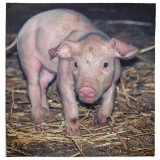 Dirty piglet napkin