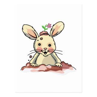Dirty Playful Bunny Postcard