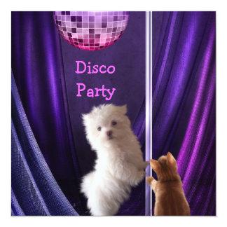 Disco Party Dog Cat Maltese Bachelorette 13 Cm X 13 Cm Square Invitation Card