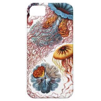 Discomedusae by Ernst Haeckel iPhone 5 Covers