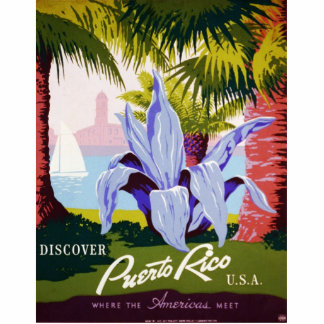 Discover Puerto Rico Photo Sculpture Magnet