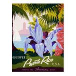 Discover Puerto Rico Postcard