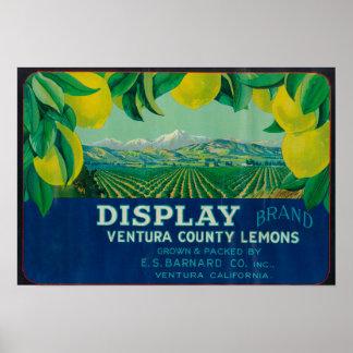Display Lemon LabelVentura, CA Poster