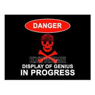 Display of Genius Postcard