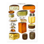 Display of Types of Cheese Postcards
