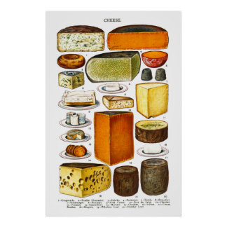 Display of Types of Cheese Poster