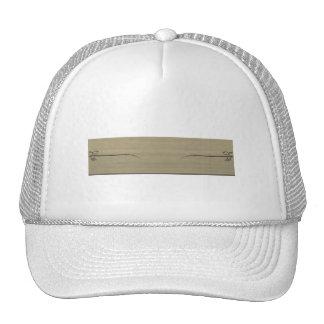 Distinctive Design Cap