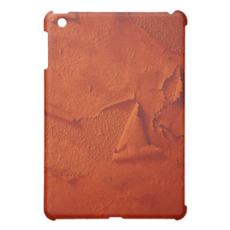 Distressed Look Case For The iPad Mini