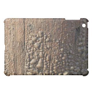 Distressed Urban Wood Texture Ipad Case