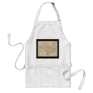 District of Columbia Washington Old Map Aprons