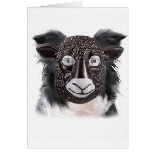 Ditzy Dogs~Border Collie Greeting Card~Sheep Card