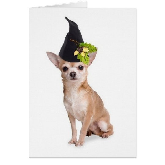 Ditzy Dogs~Original Greetomg Card~Chihuahua Card