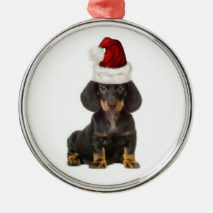 Dachshund Christmas Decorations Zazzle Com Au