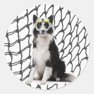 Ditzy Dogs~Original Sticker~Border Collie Round Sticker