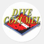 Dive Cozumel Sticker