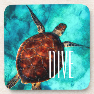 Dive Sea Turtle Coaster
