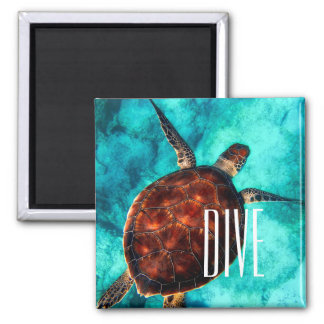 Dive Sea Turtle Magnet