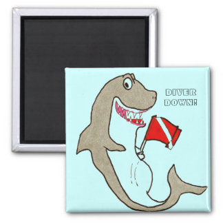 Diver Down! Magnets