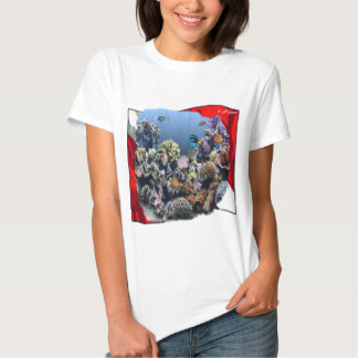 Divers Den Collection T Shirts