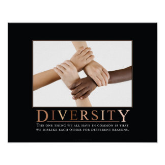 Diversity Demotivational Poster