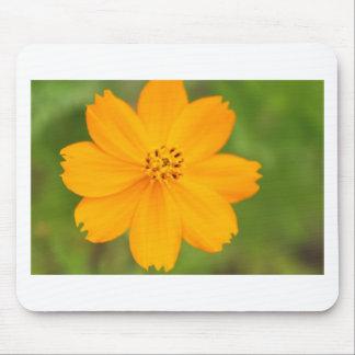Diversos Flor amarela Mousepad