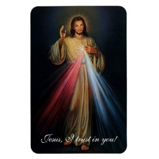 Divine Mercy Jesus I Trust In You! Magnet