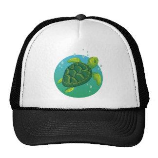 Diving more water ocean sea turtle cap