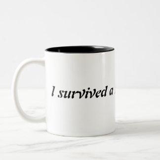 Divorce disasters Two-Tone mug
