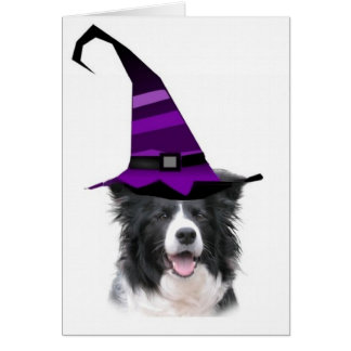 Dizzy Dogz~Border Collie Card~Halloween~Witch Card