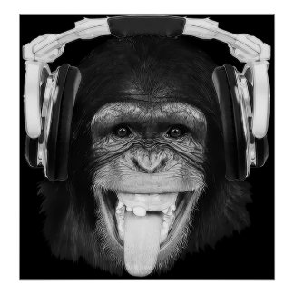 DJ Monkey Print