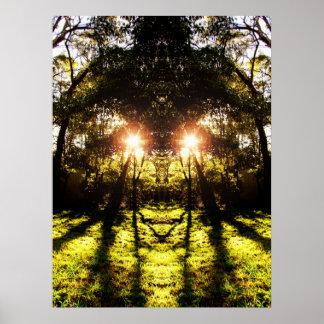 DMT 'AURUS Forest Poster