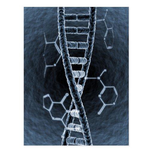 DNA strand Postcard