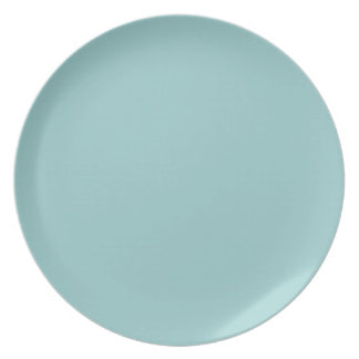 "Do It Yourself ~ Dining Plate 10"" Non-Toxic"