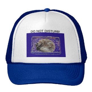 Do Not Disturb Cat Photo Baseball Cap Hat