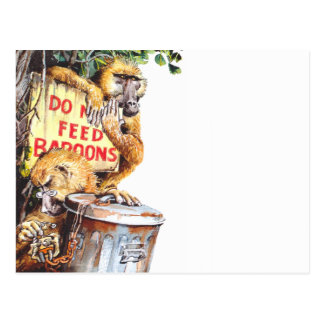 Do not feed baboon postcard