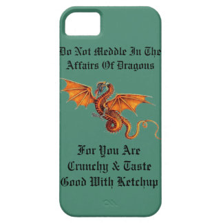 Do Not Meddle In The Affairs Of Dragons iPhone 5 Cover
