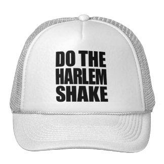 Do The Harlem Shake Mesh Hats
