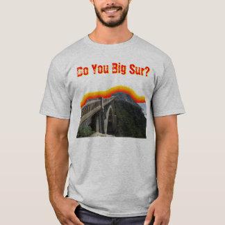 Do You Big Sur? T-Shirt