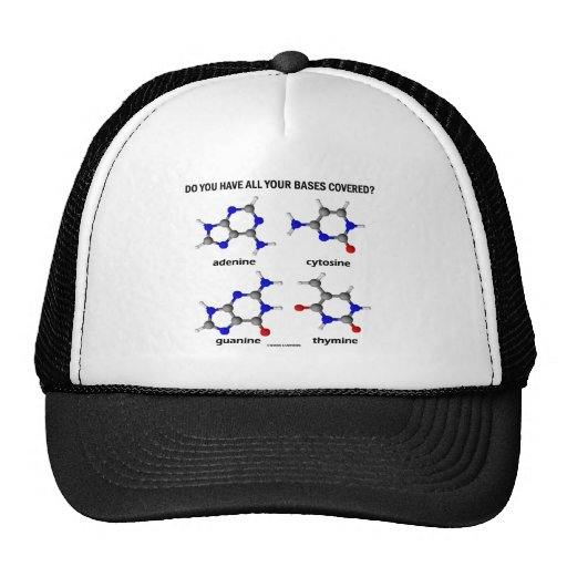 Do You Have All Your Bases Covered? (DNA Bases) Hat