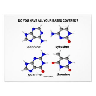 Do You Have All Your Bases Covered? (DNA Bases) Announcement