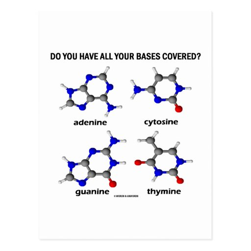 Do You Have All Your Bases Covered? (DNA Bases) Post Card
