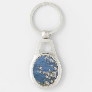Do you have keys to chain up? Silver-Colored oval key ring