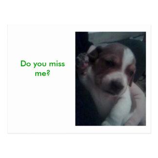 Do you miss me? postcard